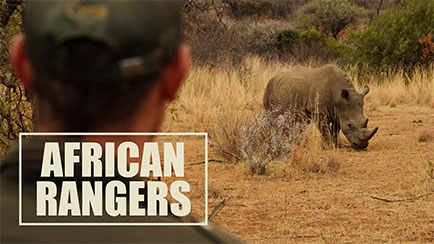 African_Rangers_feature
